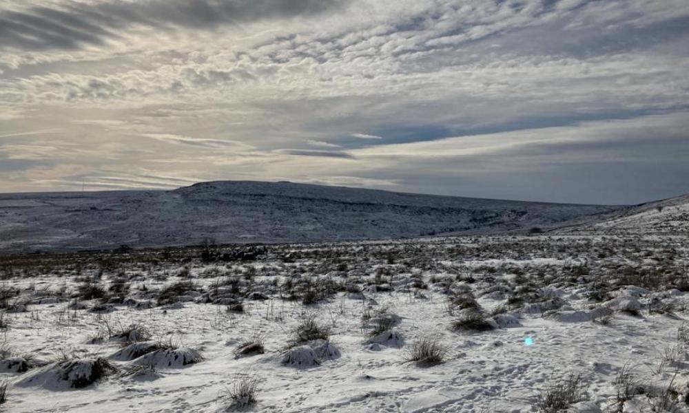 Banner winter 3